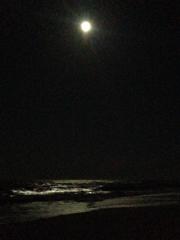 Moonlight over Cape Hatteras National Seashore